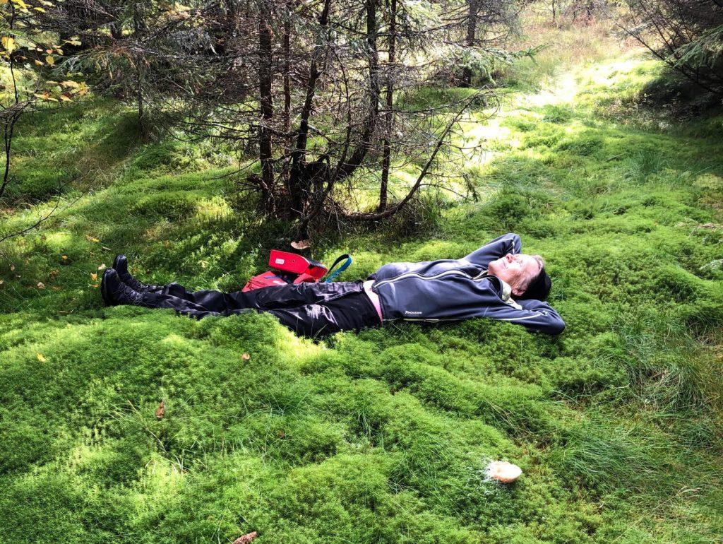 Satu ligger i mossan i skogen i ett skogsbad
